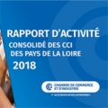 Rapport d'activité 2018 des CCI des Pays de la Loire